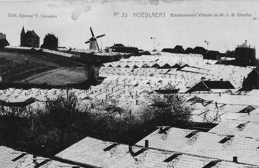 Villa en windmolen Vandervaeren
