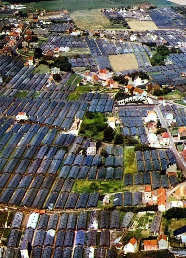 Luchtfoto Blockxveld